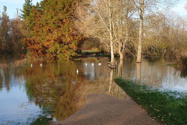 Photo of flooded path in the University Parks
