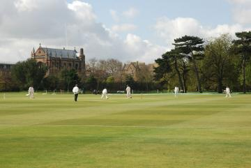 parks cricket