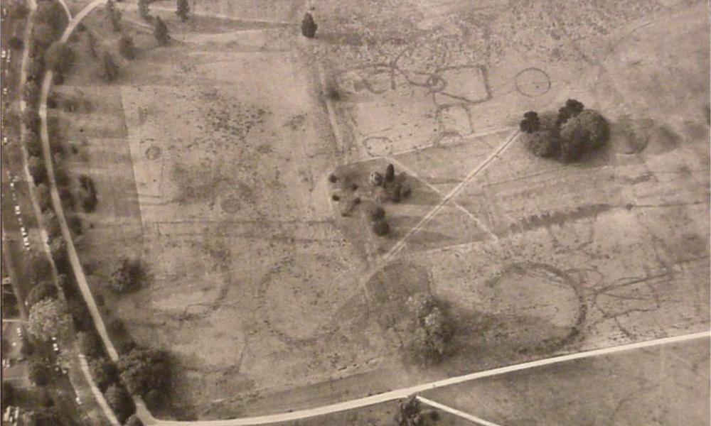 Crop marks west
